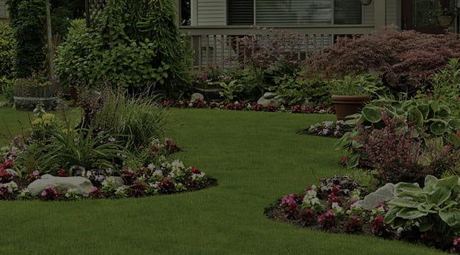 Murfreesboro Landscape Design